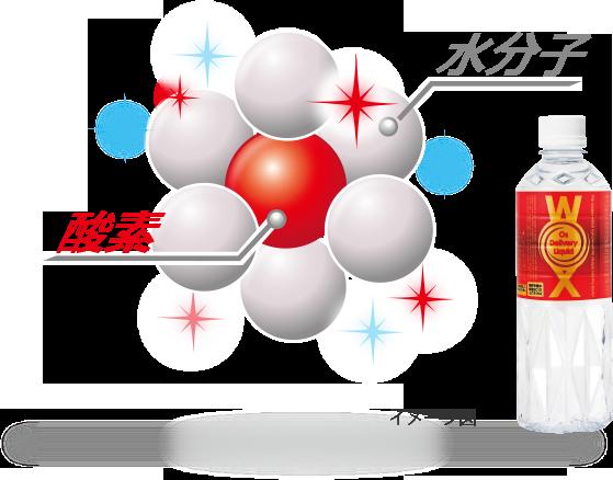酸素 水分子