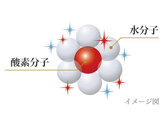 酸素分子 水分子 イメージ図